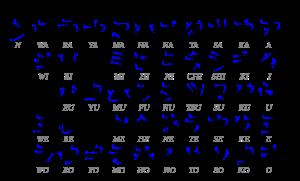 768px-Table_katakana.svg